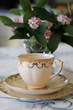 Tea Cup3