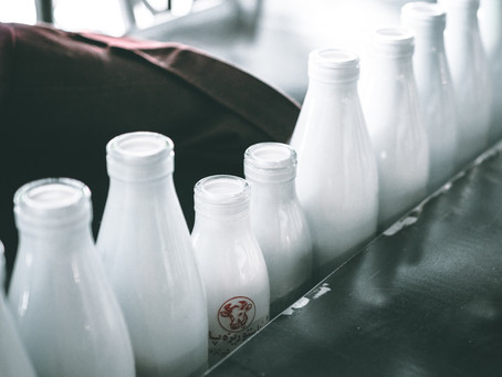 Drinking the right milk can increase or decrease aging, research finds