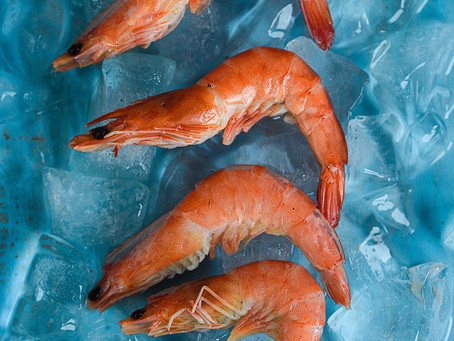 Weird science: Scientists can't figure out why Shrimp is testing positive for cocaine