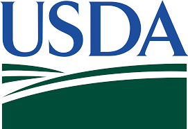 USDA launches pilot program for SNAP recipients to shop for groceries online