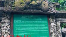 All hail the monkey king of the Ubud Monkey Forest!