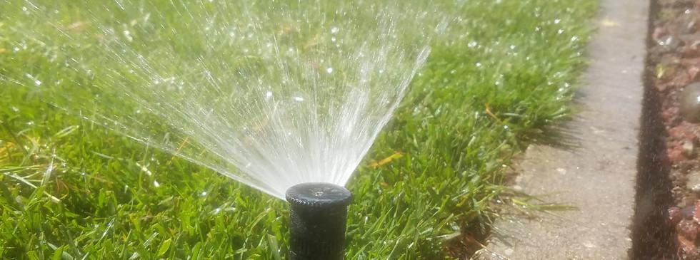Irrigation work