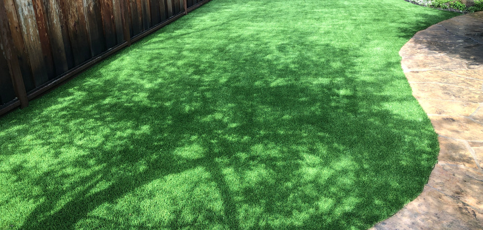 Small Side Yard