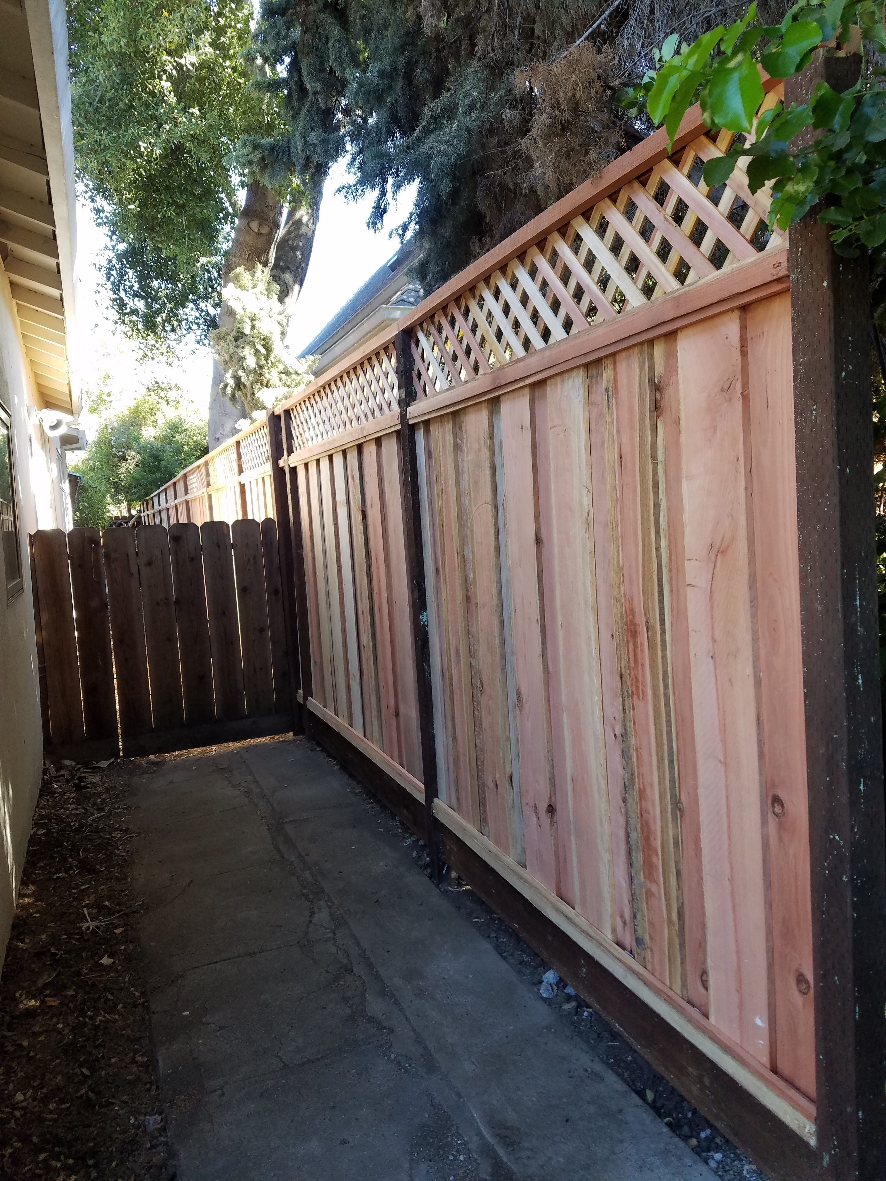 Redwood privacy fence
