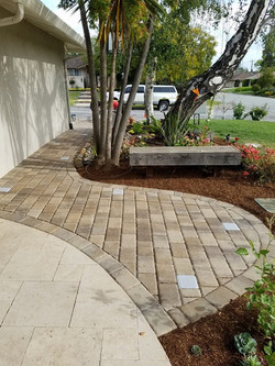 Pathway_and_landscape_renovation