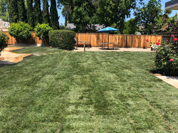 New lawn installed