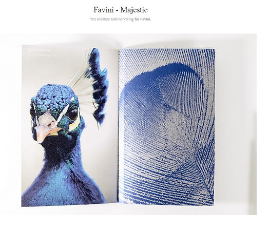 Favini papers book