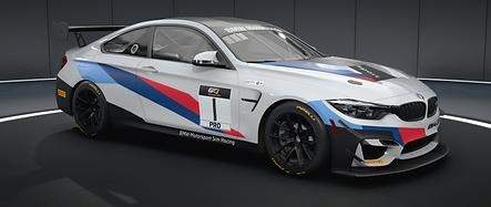 BMW GT4.png
