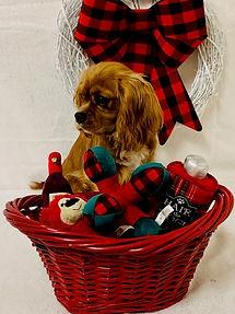 Woody red basket.jpg