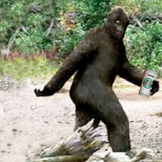 BIGFOOT with a LATTE'