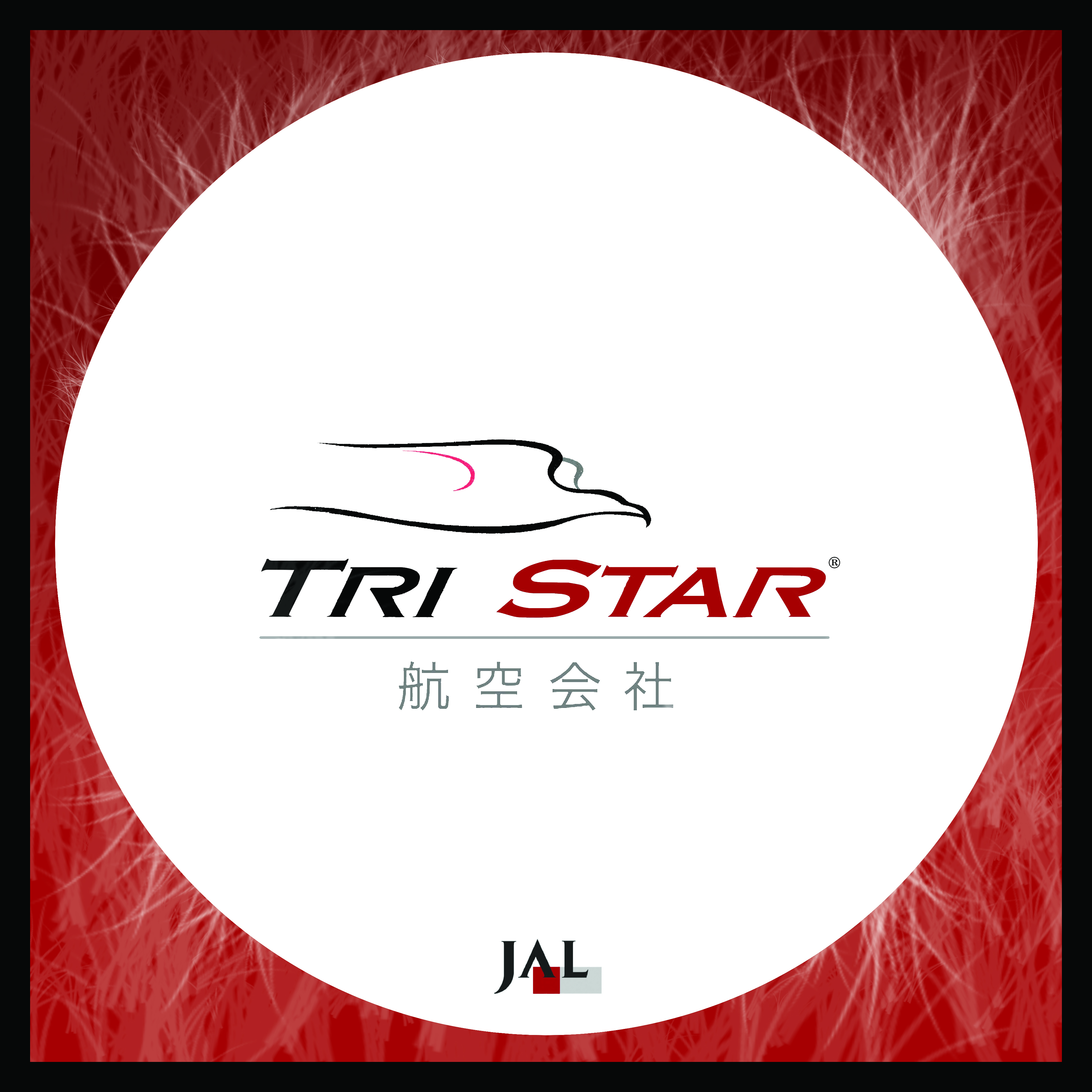 TRI STAR Airlines - detail