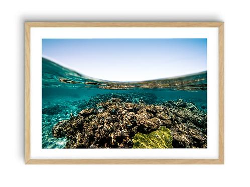 Ningaloo Reef, Western Australia Print