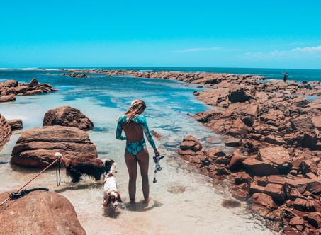 South Australia Road Trip | Surfing, 4WD & Ocean Adventures