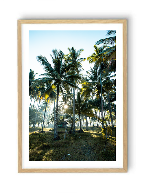 Hut among the Palms, Colour Print