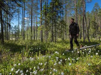 Что такое экотуризм и почему мы заинтересованы в его развитии?