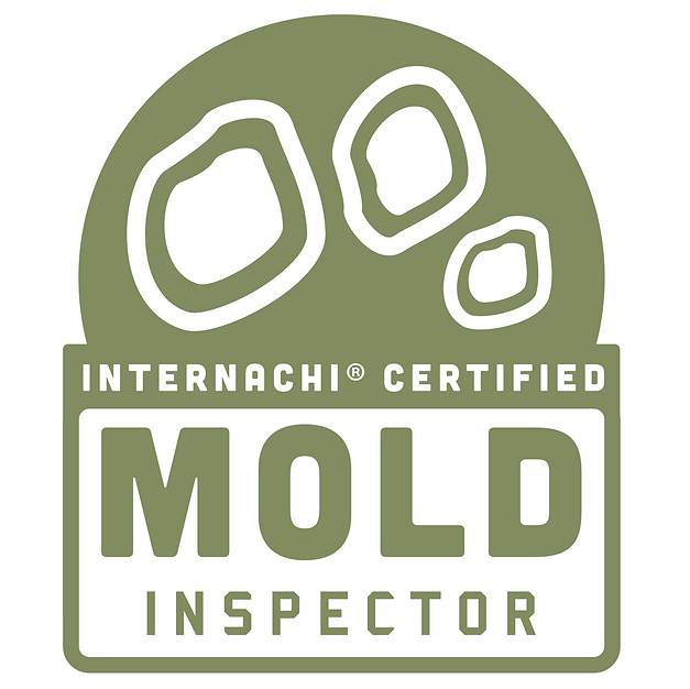 Mold Assessments
