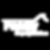 passiv white logo.png