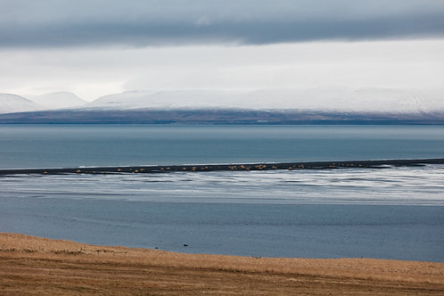 Iceland abstract