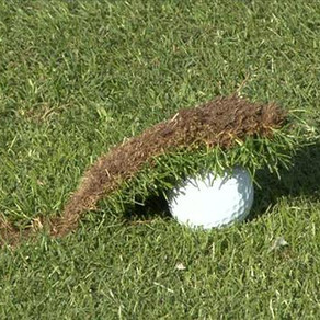 Do you hit the ground before the golf ball?