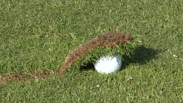 104d20d3_Chili-Dip-Golf.jpeg