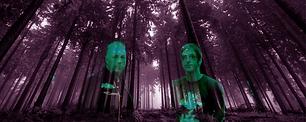 Dark_Dark_Woods_kinincho.png