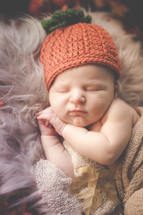 Autumn Newborn photo