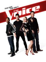 The Voice (2012, '13, '14, '17)