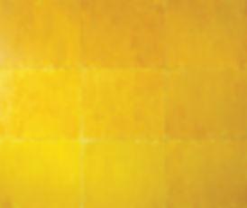 Jeremy Sharma, Variations-Yellow Light Achillea Suite 4 (Golden), 2011