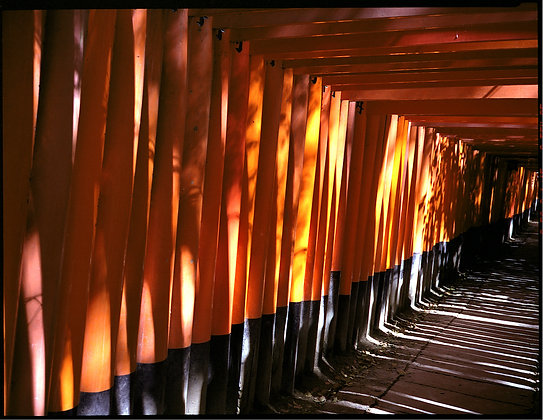 Vermillion Gates, Japan by KHENG LI WEE, Singapore photography, Art Forum, Art for homes and offices