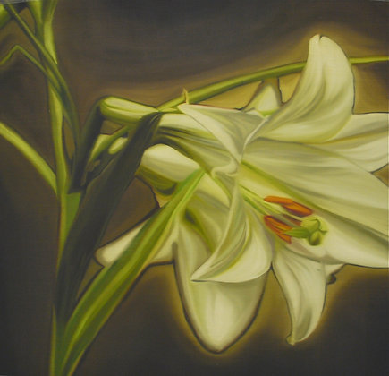 Lily Glow by ERIC CHAN, Art Forum, Art for homes and offices, Singapore art