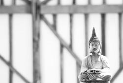 Budha Love