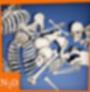 SkullsAndBones_Thumb2.png