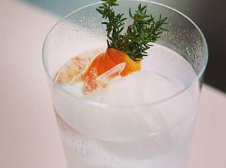 Rowbarge gin garden