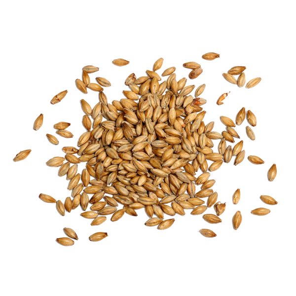 kisspng-beer-brewing-grains-malts-cereal