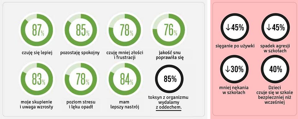 Badania_SKY.png