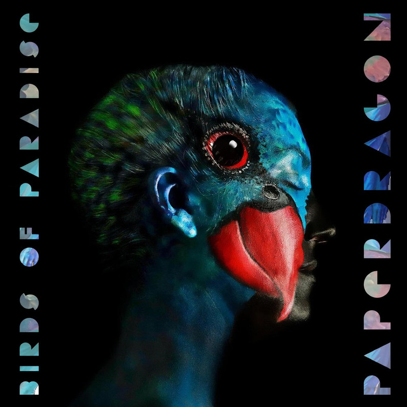 Our Space Paper Dragon - Birds Of Paradise EP + Coastal Remix
