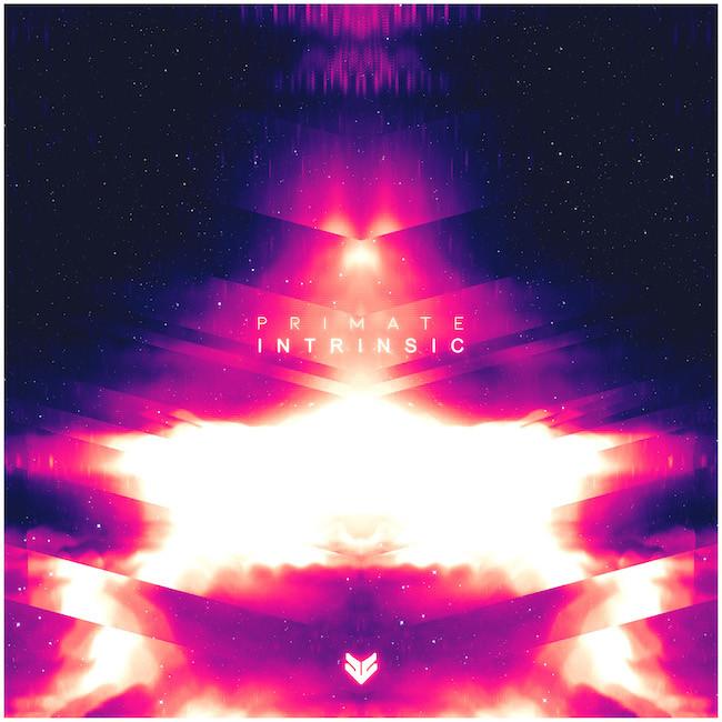 VALE Primate // Intrinsic Promo Mix