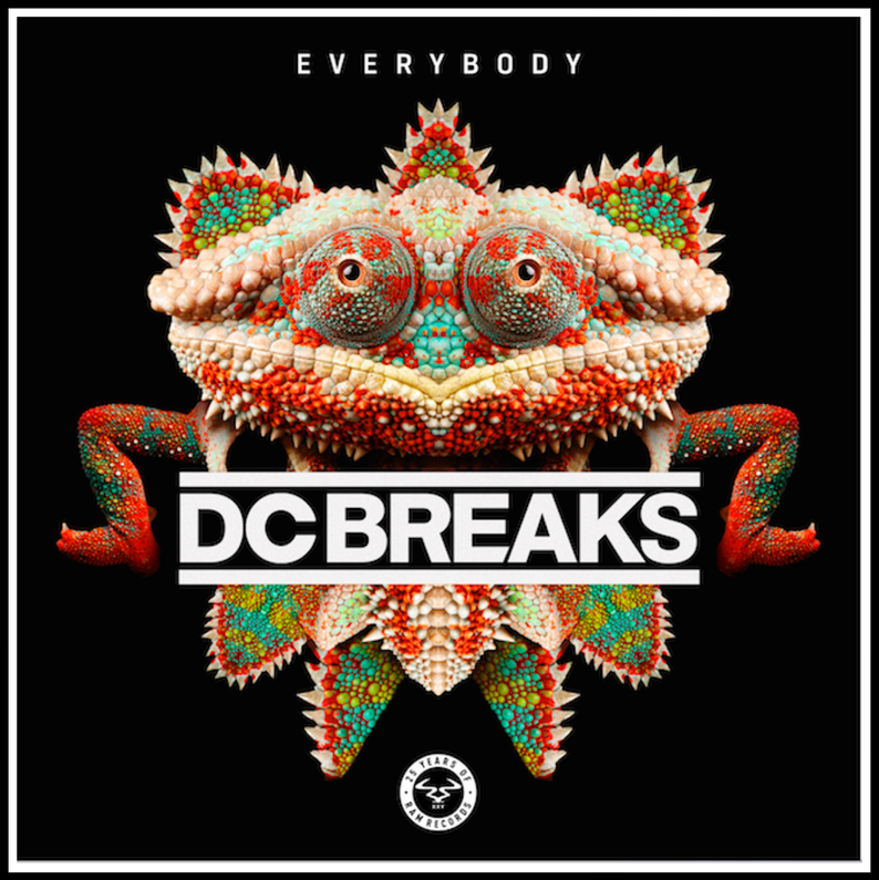 DC Breaks - Everybody Ram Records