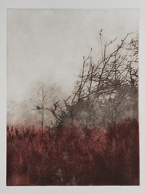 Kennedys Marsh, Kathleen Mogayzel, Printmaking - soloar etching, 8 x 6