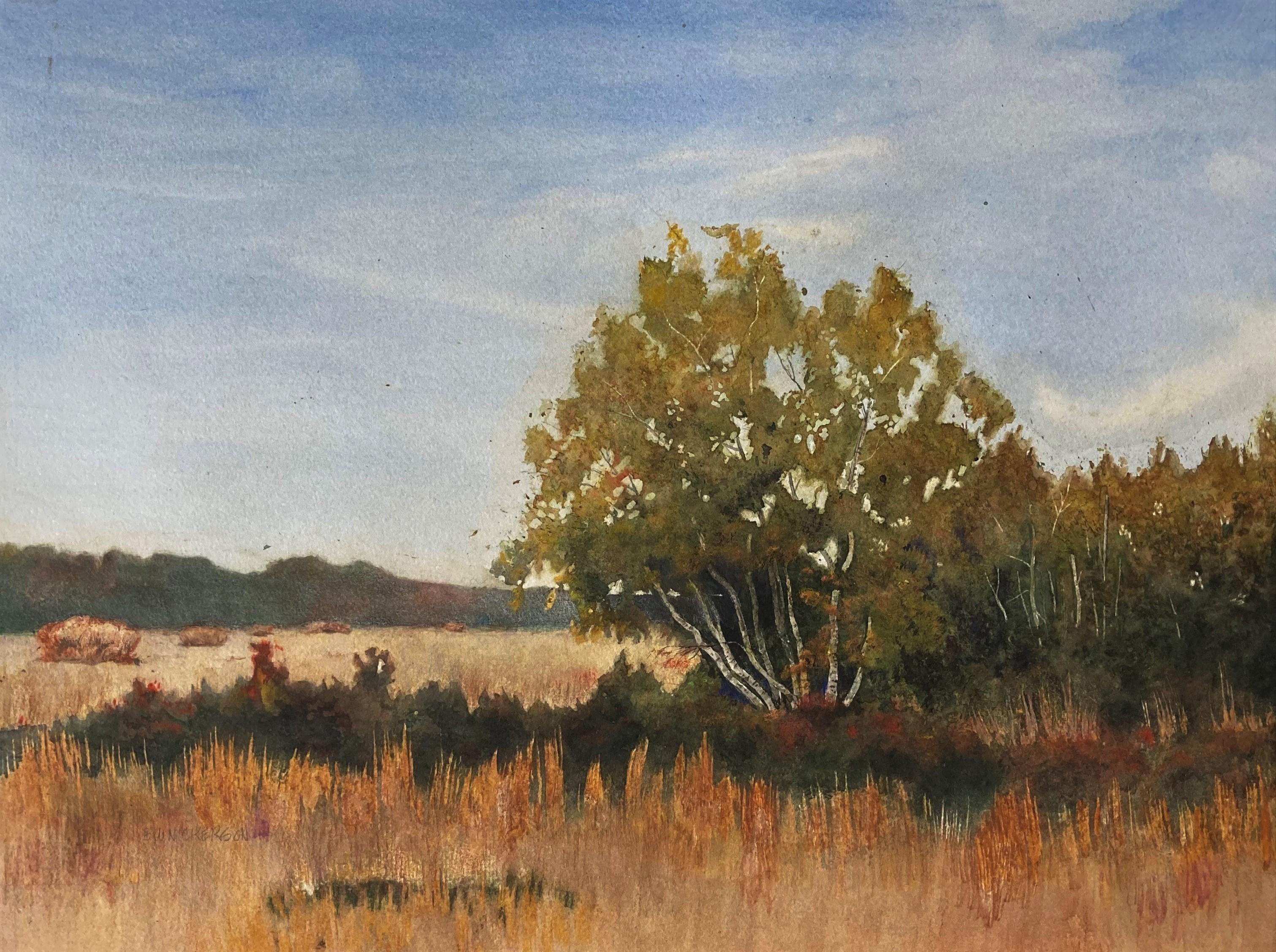 """Birch Clump"", Watercolor, 13""x19"""