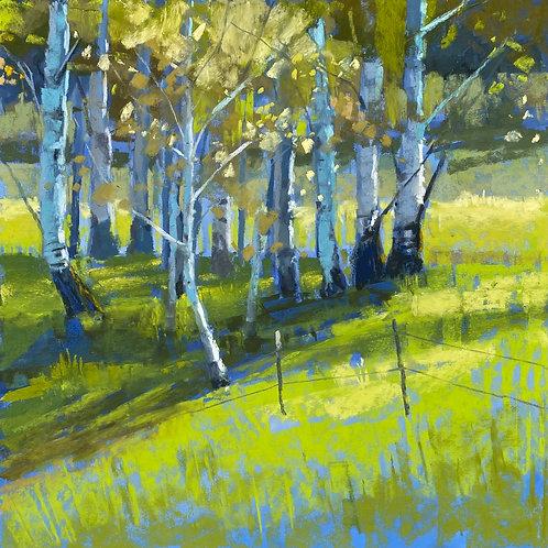Bridger Blues, Liz Haywood-Sullivan, Pastel - , 12 x 12