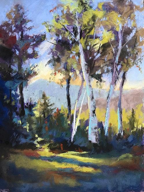 Dancing Birches, Alison Davidson, Pastel - , 11.5 x 8.5