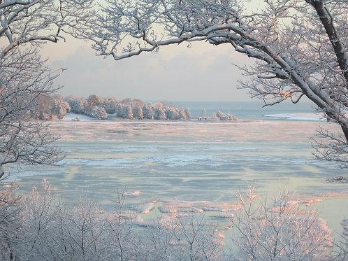 Winter Marsh, Kurt Mustonen, Photography - Early morning winter scene, 8 x 10