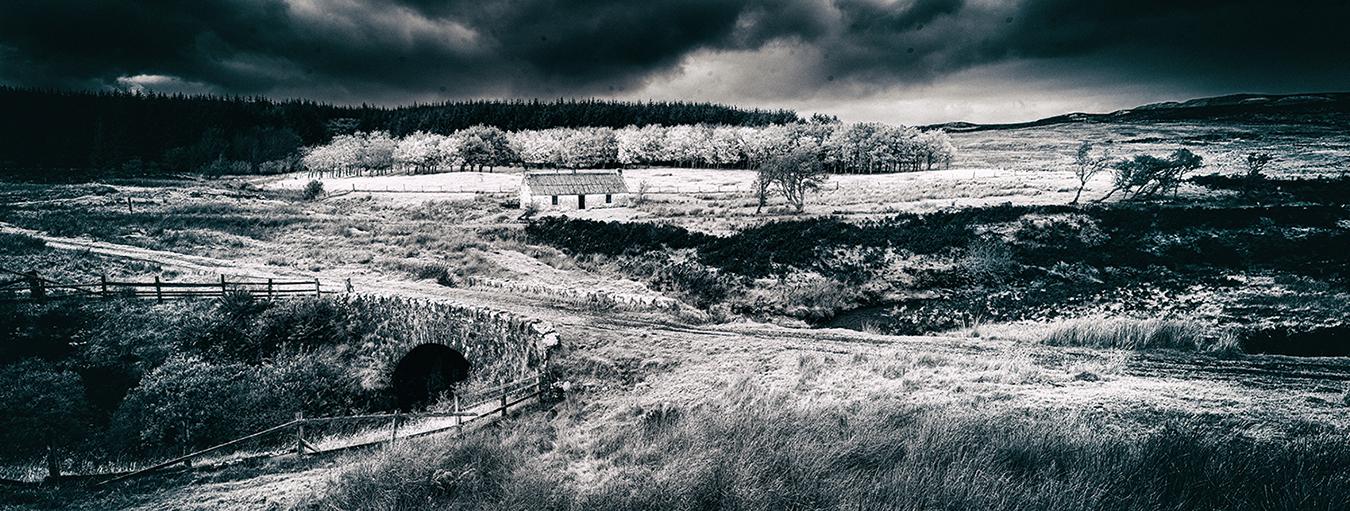 """Scotland"", Photography, 24""x12"""