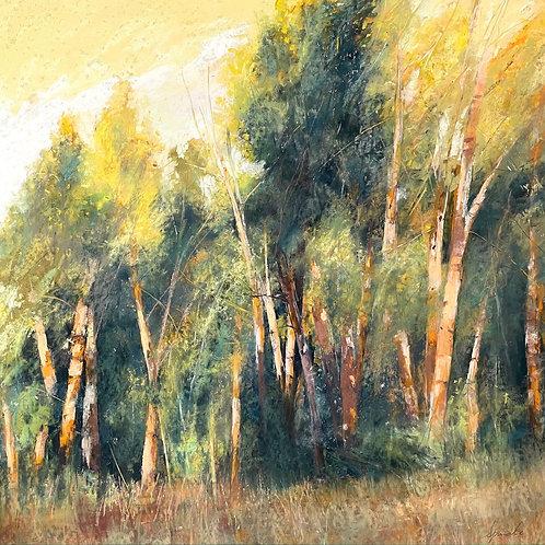 Tree Spirits, Maureen Spinale, Pastel - , 30 x 30
