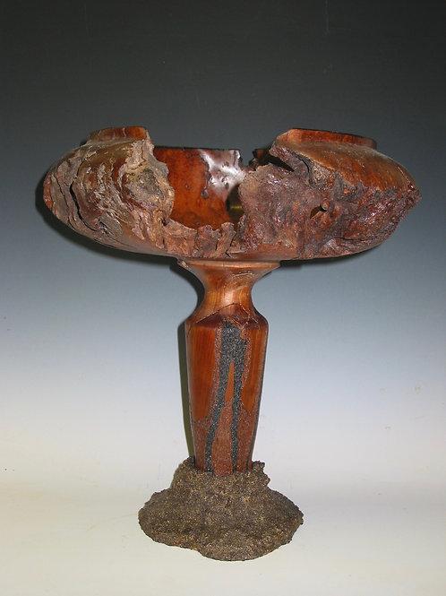 Nature Sculpts, Ken Lindgren, Sculpture - wood carving of cherry burl, 16 x 13