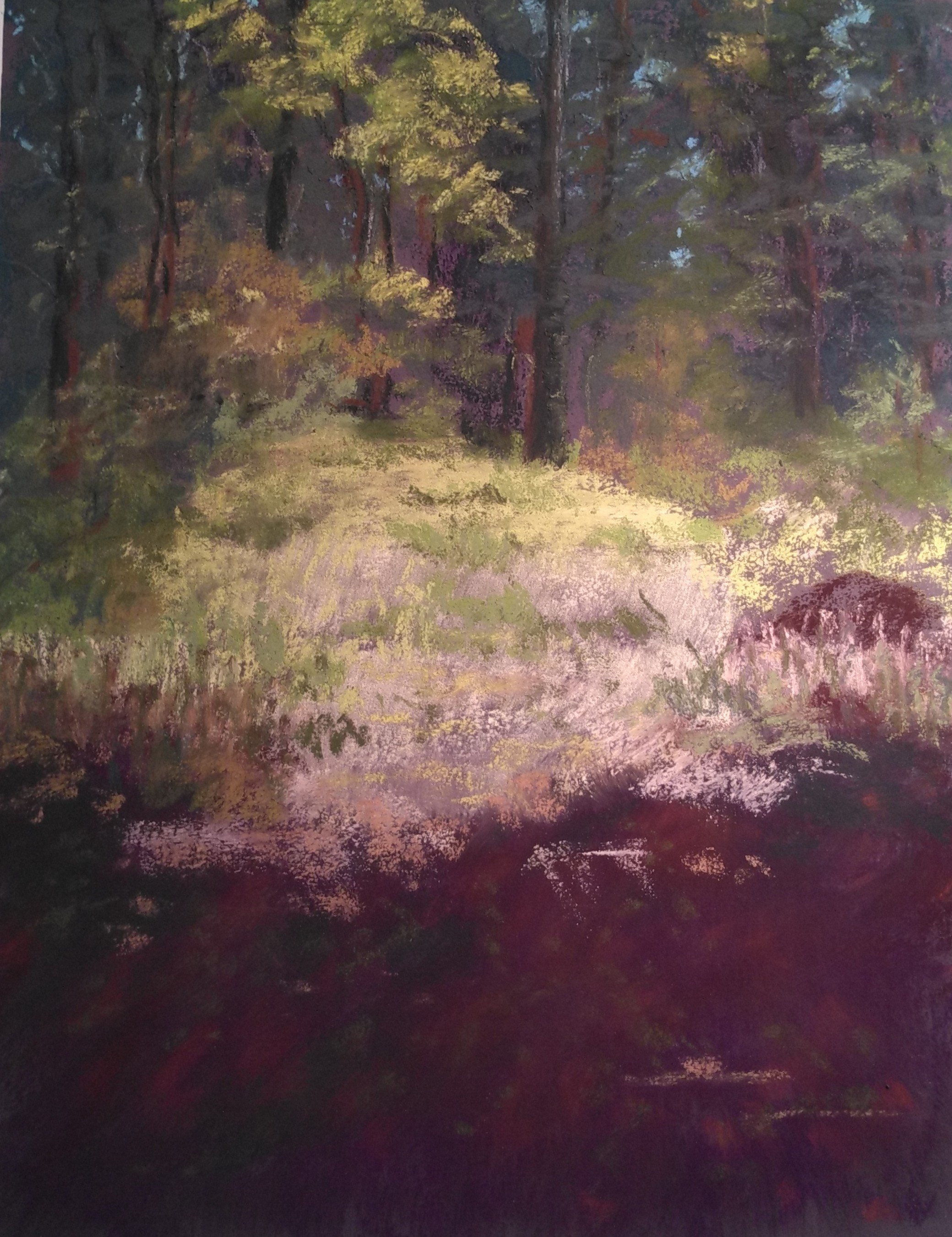 """""""Town Forest Sunlight and Shadow"""", Soft Pastel, 12""""x9"""""""