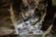 วังศิลาแลง.jpg