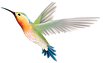 birds_PNG49.png