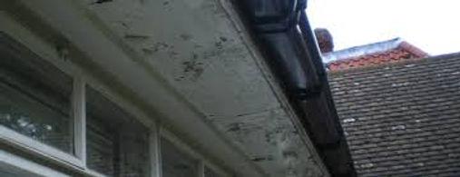 Asbestos Insulating Board soffit